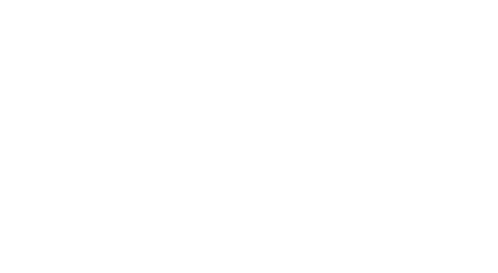 Welcome to Wild Swan Theater